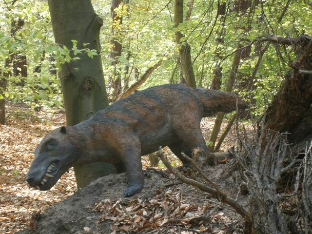 Солец, странный динозавр