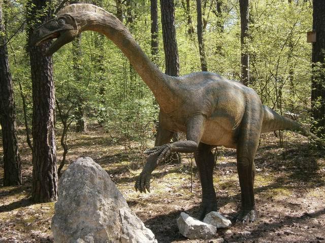динозавров с длинной шеей