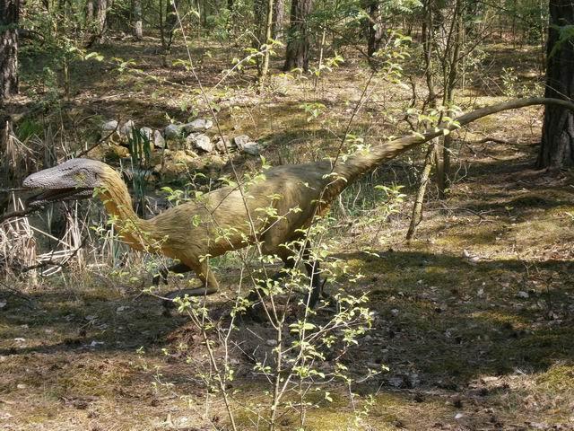Солец, прогулка по парку динозавров