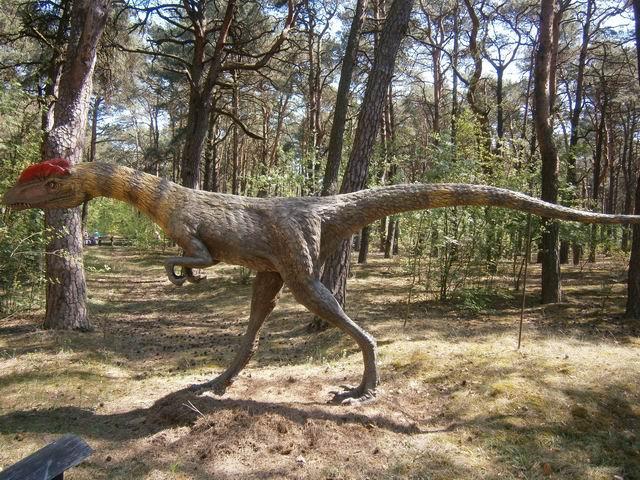 парк динозавров весной