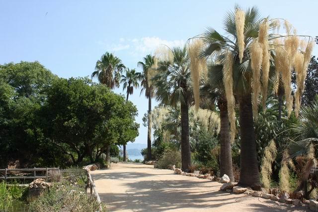 Marimurtra аллея парка