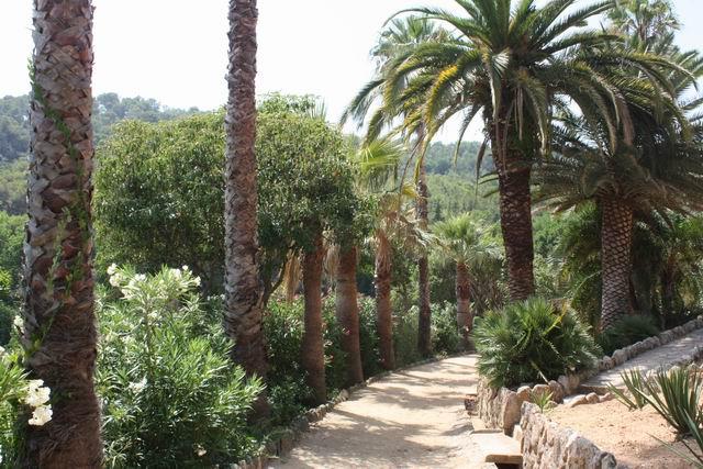Pinya de Rosa тропинка в парке