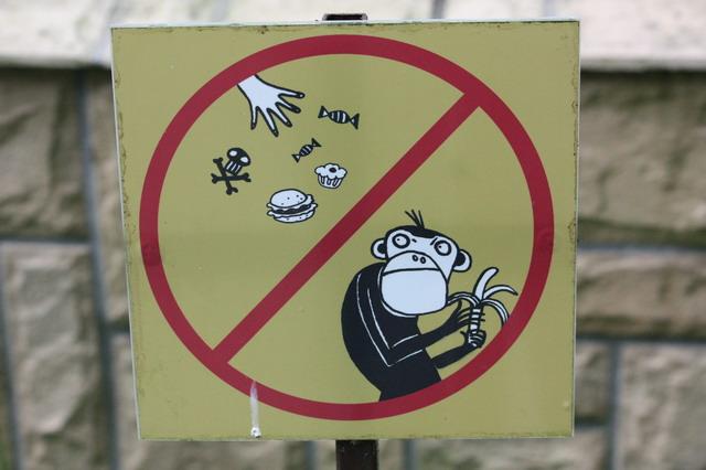 Животных не кормить!