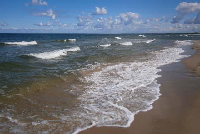 Собешевский остров побережье