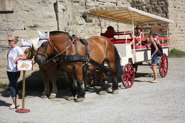 Каркассон повозка с лошадьми