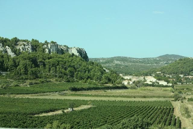 виноградники, дорога в Каркассон