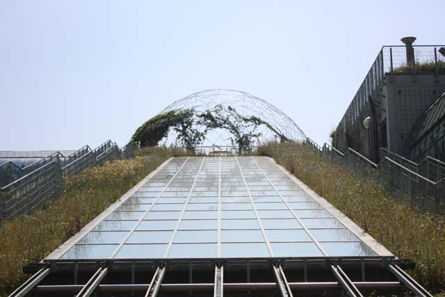 Варшава крыша университетской библиотеки
