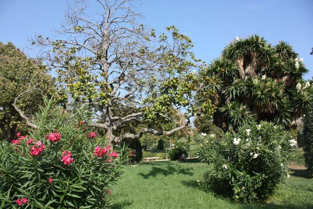 Барселона парк Цитадели растения цветы
