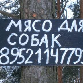 Реклама в лесу — мясо для собак