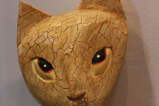 кот большие глаза