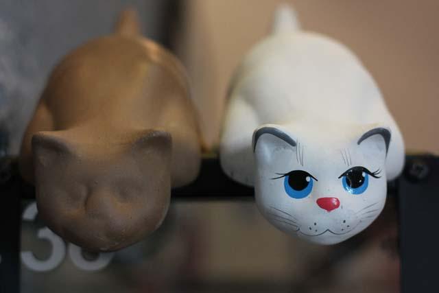 коты на жердочке