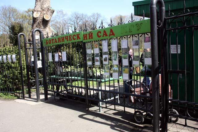 Калининград ботанический сад вход