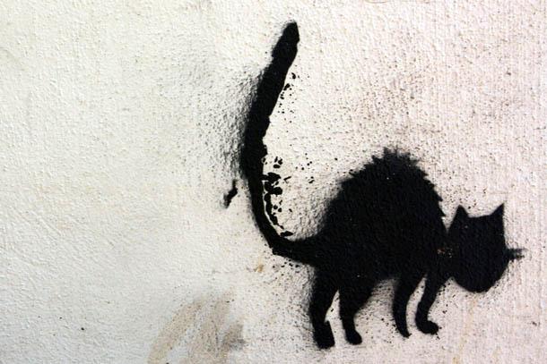 Граффити черная кошка