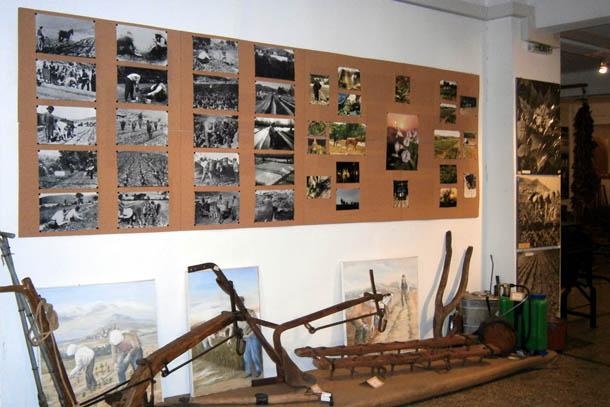 Музей табака в Кавале экспонаты на стене
