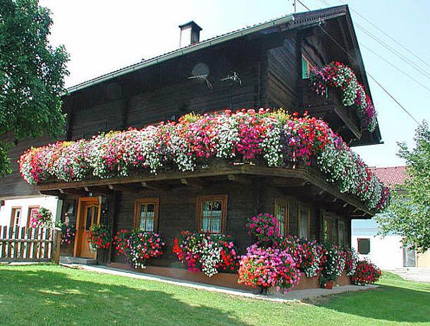 Австрийский домик в цветах