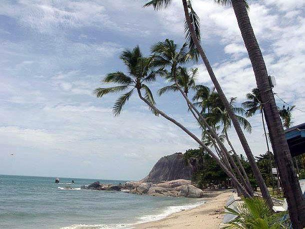 Шикарный пляж с пальмами