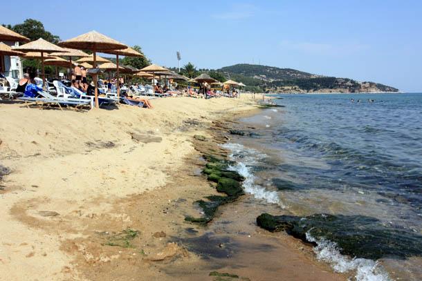 зонтики, море и берег