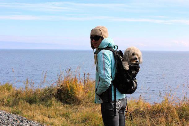 Байкал, Иркутск с рукзаком и любимой собачкой!