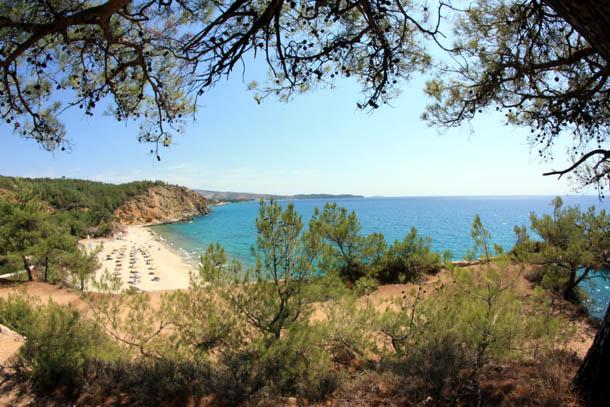 Металия - вид на побережье сквозь деревья