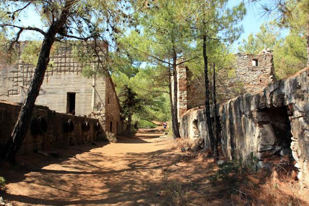 остатки зданий в хвойном лесу на Тасосе