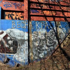 Весна красна — подборка граффити из Калининграда