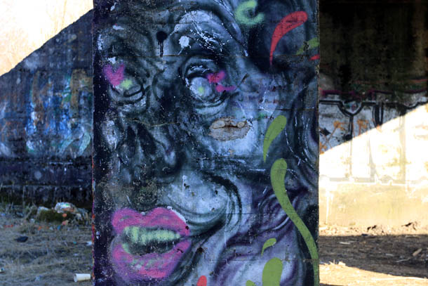 Граффити - женское лицо