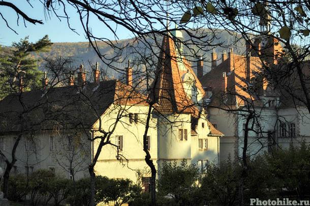 Замок Шенборнов в Чинадиево