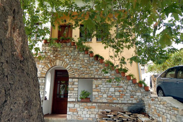 Платан и дом с цветами на ступенях