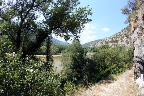 растительность северной Греции