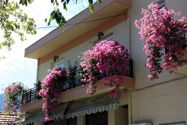 Балкон с розовыми свисающими цветами