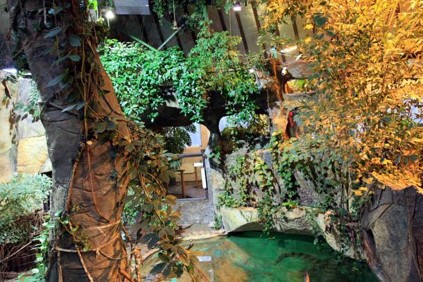 тропический оазис в зоопарке