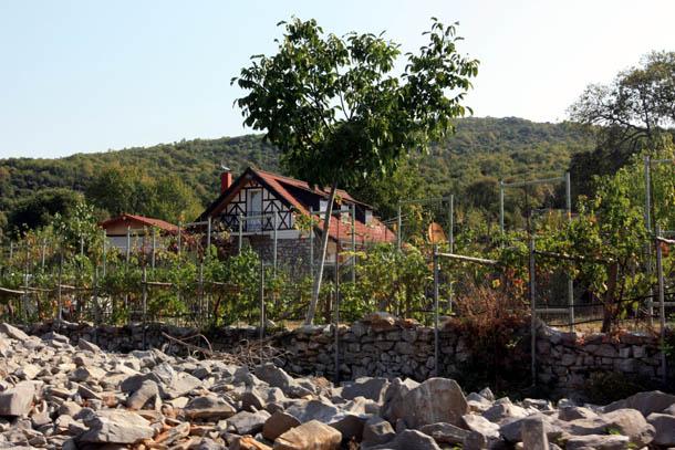 Дом в заброшенной деревне