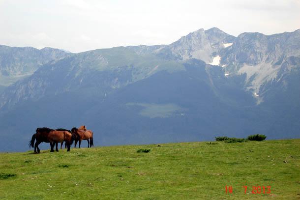 Горы Комови, Эко-катун Штавна, Черногория.