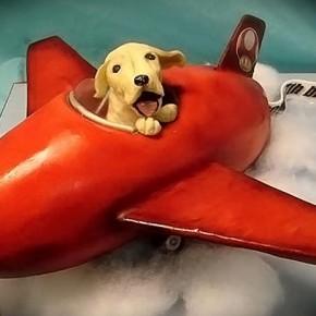 Советы для тех, кто путешествует с собакой