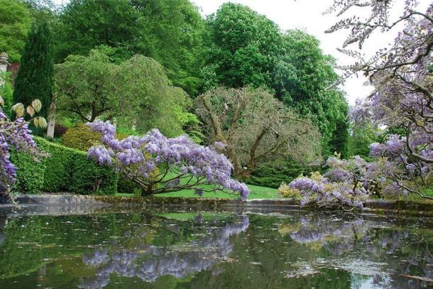Парк Баскот в Англии