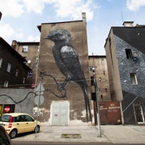 Подборка граффити из Катовице