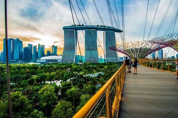 Вид с металлического моста OCBC Skyway на Сингапур