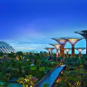 Сады у залива Марина Бей в Сингапуре