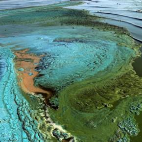 Куршский залив — удивительные узоры на побережье