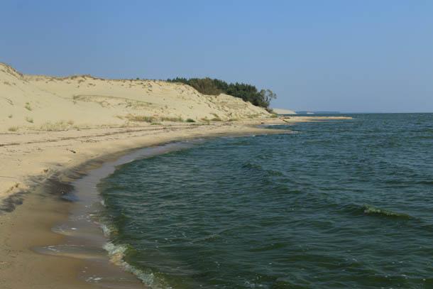 красота Куршского залива
