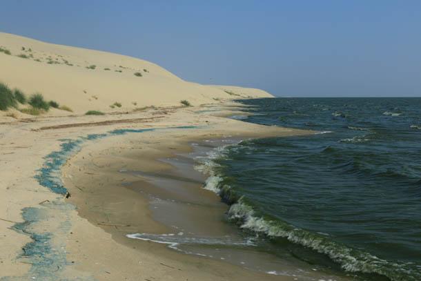 волны в Куршском заливе