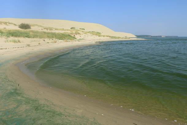 Бирюзовая вода залива