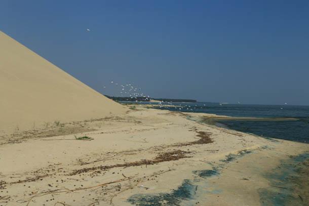 песчаные дюны на Куршской косе