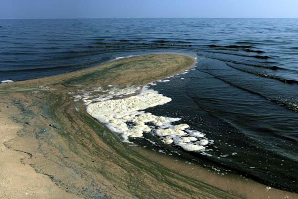 изгибы побережья залива