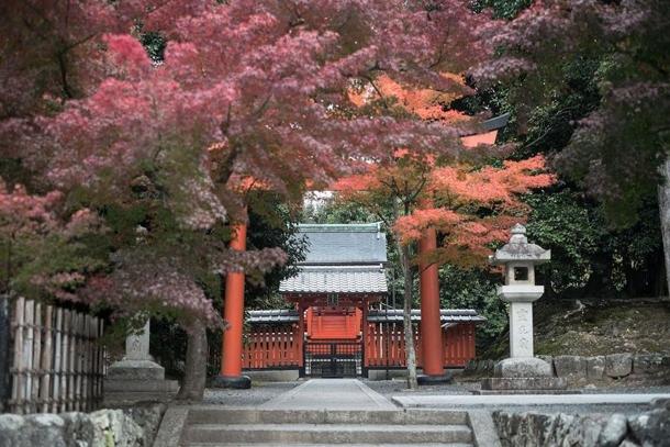 Комплекс буддийских храмов Тенриу-Дзи Шигетсу