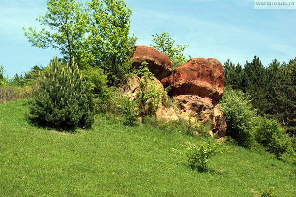 Камни Красные грибы
