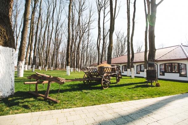 Природа Косино - оздоровительного комплекса в Закарпатье