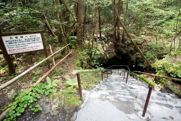 Вход в пещеру в лесу Аокигахара Дзюкай