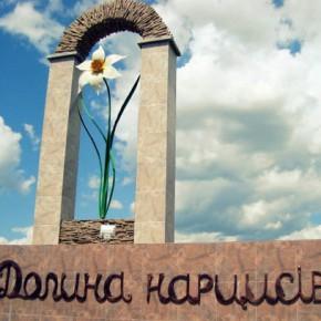 Долина нарциссов в Закарпатье