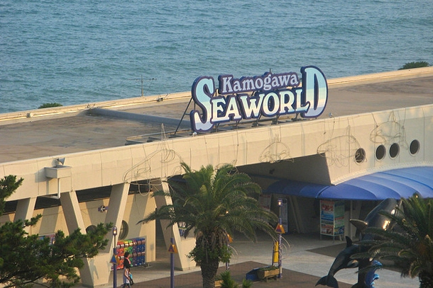 Океанариум Kamogawa Sea World